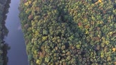 mysterious : View down. Flying over the forest and the river. Copter Stock Footage
