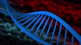 bandagem : Dna strands are assembled from individual elements. Red white background