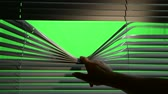 panjur : Person opens horizontally jalousie curtains with a finger. Green screen