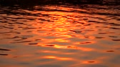 shimmers : River at sunset . Slow motion Stock Footage