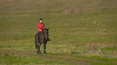 Walking of a horse across a green field with a rider. Slow motion