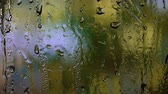 нечеткий : Close up image of rain drops falling on a window . Blurry background Стоковые видеозаписи