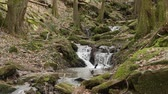 havoc : A slow motion shot of a river flow  waterfall in the gorge Margarethe. Located in Germany, in the Neckar Odenwald district.