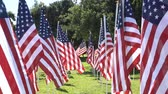 muçulmano : 4K Video of a sunny morning view of Sea of America Flags