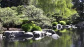 japon : Japanese garden of Denver Botanic Gardens at Denver, Colorado, United States Stok Video