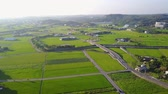 famous : Aerial view of the beautiful rice field around Yuanli Township, Taiwan