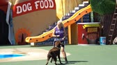 misja : San Diego, JUN 27: Pet show in the famous SeaWorld on JUN 27, 2018 at San Diego, California