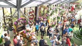 europe holland : Lisse, APR 21: Interior view of a special exhibition on APR 21, 2018 at Keukenhof, Lisse, Netherlands