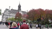 turistler : Quebec, OCT 2: Beautiful fall color with the Montreal City Hall on OCT 2, 2018 at Quebec, Canada Stok Video