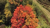 vista laterale : Aerial view of the beautiful fall color of Mont Orford at Quebec, Canada