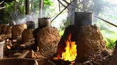 char grilled : Cooking with char kiln and a pot in a farming resort at Taoyuan City, Taiwan