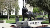 ロサンゼルス市 : Redlands, MAR 20: Dog statue in University of Redlands on MAR 20, 2019 at Redlands, California