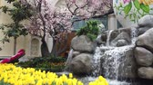 tulp : Las Vegas, 28 april: Speciale Japanse lenteweergave in Bellagio Conservatory & Botanical Gardens op 28 april 2019 in Las Vegas, Nevada Stockvideo
