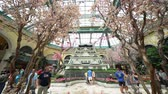 nevada : Las Vegas, APR 28: Special Japanese spring display in Bellagio Conservatory & Botanical Gardens on APR 28, 2019 at Las Vegas, Nevada