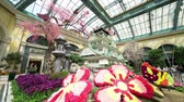 人工的な : Las Vegas, APR 28: Special Japanese spring display in Bellagio Conservatory & Botanical Gardens on APR 28, 2019 at Las Vegas, Nevada