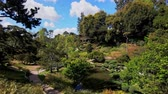biblioteka : Japanese Style Garden of Huntington Library at Los Angeles, California