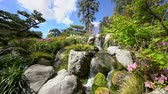 travel : flowing cascade scenery