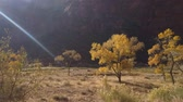oldal : Beautiful autumn landscape around Zion National Park at Utah