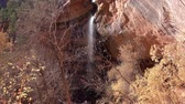 novembro : Beautiful Lower Emerald Pools landscape around Zion National Park at Utah