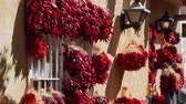 rode paprika : Wall hanging with many red pepper string at Albuquerque, New Mexico