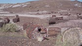Mooi landschap van Petrified Forest National Park in Arizona