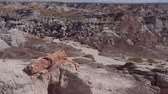 servis : Beautiful landscape of Petrified Forest National Park at Arizona Stok Video