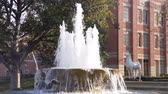 Калифорния : Afternoon sunny view of the Patsy and Forrest Shumway Fountain of USC at Los Angeles, California