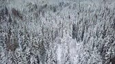 High flying camera tilt up over large woods in the cold winter Stock Footage