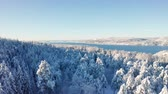 intocada : Flying slow towards a fjord above epic snowy cold winter forest