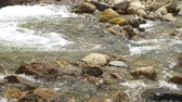 pedregulho : Scene pans down a portion of a rocky mountain stream.