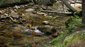 pedregulho : A shallow stream in Rocky Mountain National Park.