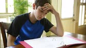 caderno : A teenage boy struggling with his homework.