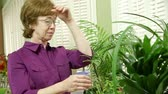 cidadão : A mature woman tending to her potted house plants stops and smiles.