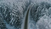 de neve : Top view of free rural highway in winter forest