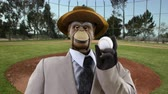 manequim : Vintage Puppet Monkey with Baseball Vídeos