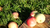 contramestre : Apples on the kitchen board on the grass. Panoramic shot