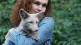 лиса : Artificially breed fox on young womans hands. Close up