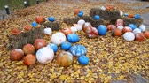 oyma : Painted pumpkins lie on the leaves in the park. End of the feast of all saints Stok Video
