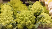 brokolice : Romanesco broccoli aka roman cauliflower cabbage