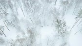 Couple walking in snowy park aerial. Birds eye view