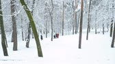 Two woman with baby carriage walking in snowy park. Aerial shot. Maternity concept