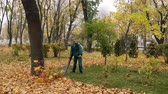 опрятный : Worker blowing the autumn leaves with a leaf blower. Fallen leaves cleaning 4k