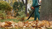 опрятный : Worker blowing the autumn leaves with a leaf blower. Fallen leaves cleaning. Middle plan 4k Стоковые видеозаписи