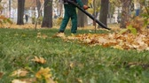 опрятный : Man blowing the autumn leaves with a leaf blower. Fallen leaves cleaning. Middle plan 4k