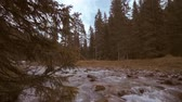 течь : A river flows among the branches of the trees of the forest and among the boulders of the mountains