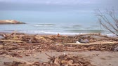 bright water : Dirt and rubbish on the seashore, brought by a past storm Stock Footage