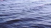 blue sea : Sea blue water surface Stock Footage