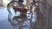 flooded road : Bicycles parked in the city flooded by the tsunami