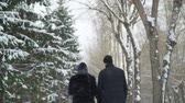 zadnice : Couple Walking in Snow Day Dostupné videozáznamy