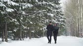 sevgililer günü : Man and Woman Walking in Winter Park Stok Video